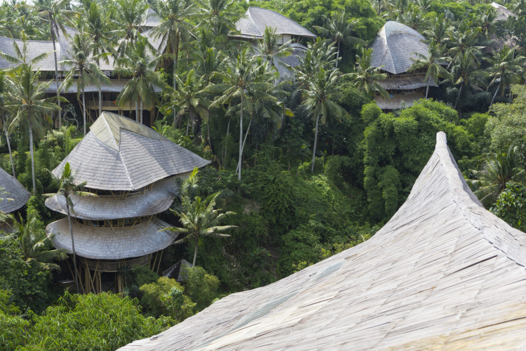 Treehouse rooftops of tropical hotel, Ubud, Bali, Indonesia
